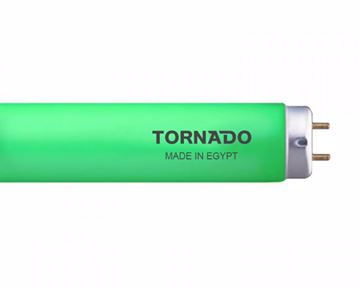 Picture of TORNADO Colors Fluorescent Lamp 19 Watt, 60 cm With Green Light FL20T9/19G(T)