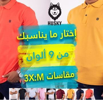 Picture of 4 shirt polo for men